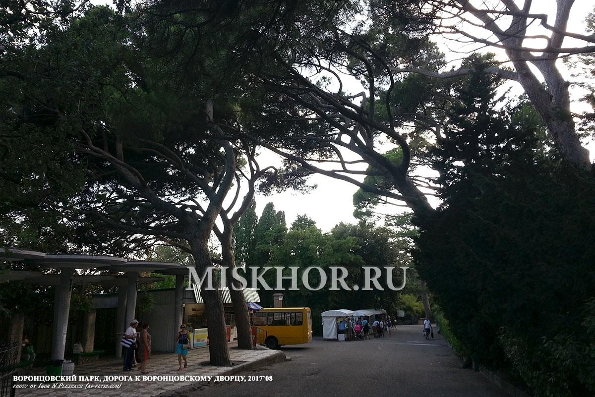 Дорога в Воронцовский парк