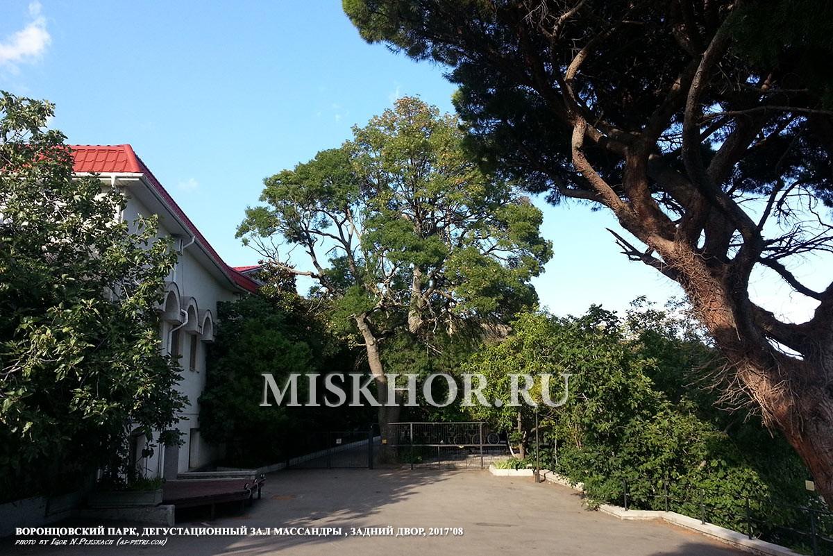 Дегустационный зал Массандра Алупка, задний двор
