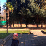 Аллеи приморского парка г.Ялта
