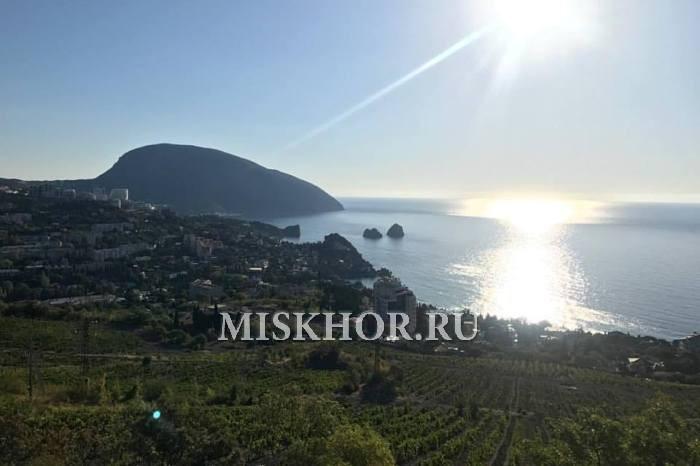 Завод Массандра открывает первую винную деревню в Крыму - в Гурзуфе