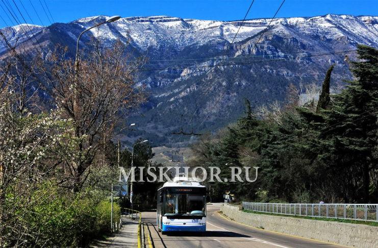 Расписание троллейбусов из Симферополя в Ялту и Алушту, график и цены